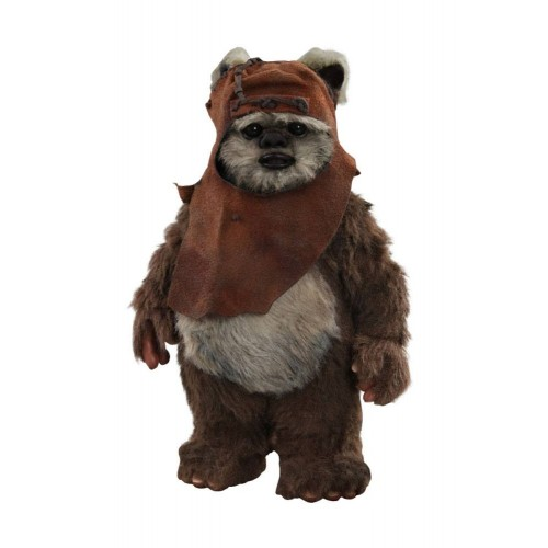 Star Wars Episode VI 1/6 Wicket Action Figure Hot Toys - Official